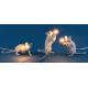 SELETTI Mouse Sitting Lamp